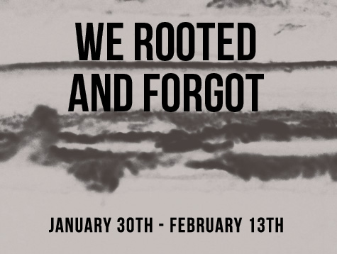 "Laura Tack's ""We Rooted and Forgot"" opens on Wednesday at Con Artist"